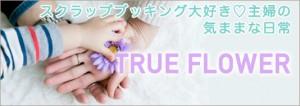 banner_w_blog